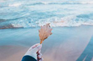 girl's hand holding a leaf in front of ocean shore